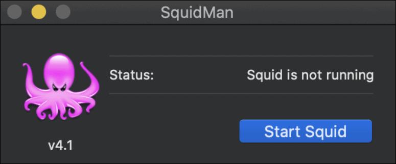 squidmanを開始します proxy サーバー